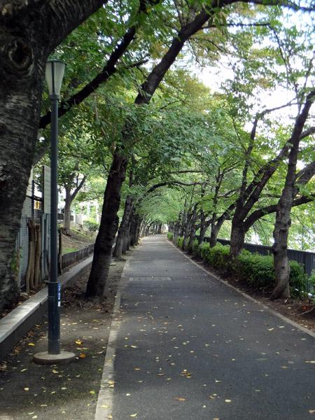 北大阪周遊自転車道