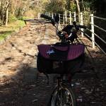 神出山田自転車道ポタリング2