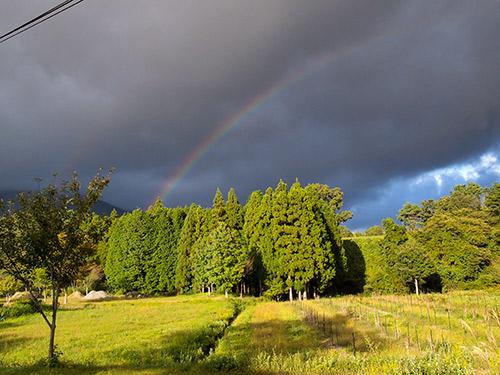 蒜山高原 虹