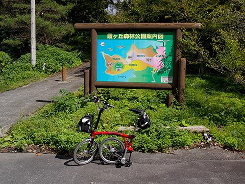 霞ヶ丘森林公園