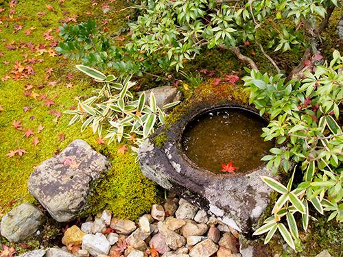 光悦寺。庭園