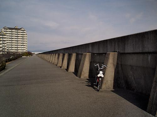 武庫川堤防