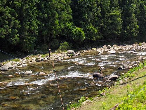 名張川 鮎釣り