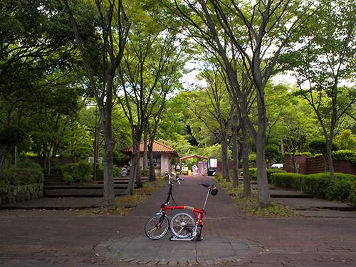 須磨離宮公園 植物園