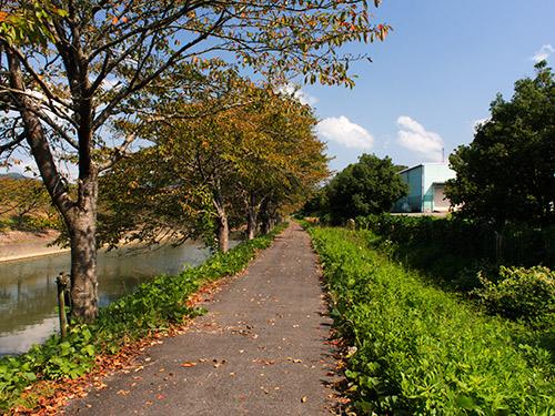 宮田川沿い