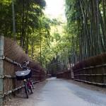 山崎~嵐山ポタリング3