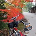 京都大原、紅葉探訪1