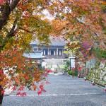 京都大原、紅葉探訪2