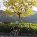 京都大原、紅葉探訪3