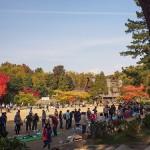 シクロジャンブル、秋散歩
