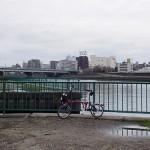 なにわ自転車道~万博公園梅まつり1
