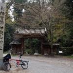 桜坂めぐり4