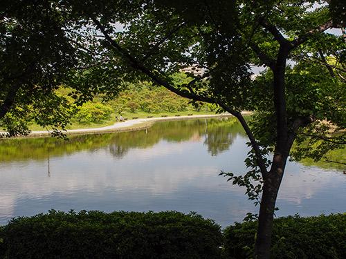 緑ヶ丘公園 上池