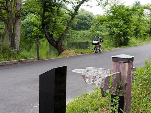 篠山城跡 濠沿い