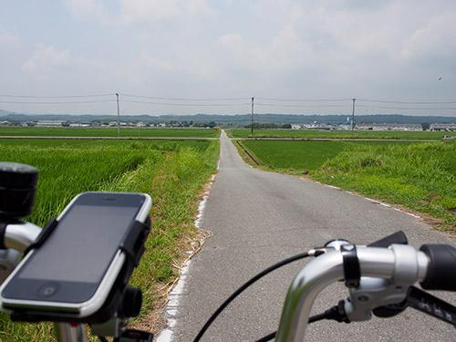 小野市 水田