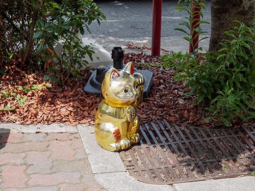 出町柳駅前の謎の招き猫