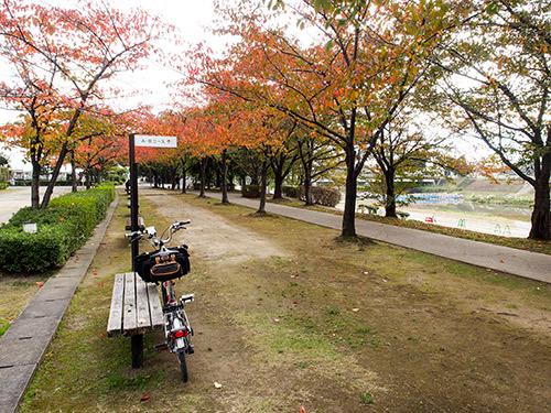 京都八幡木津自転車道 京川橋付近