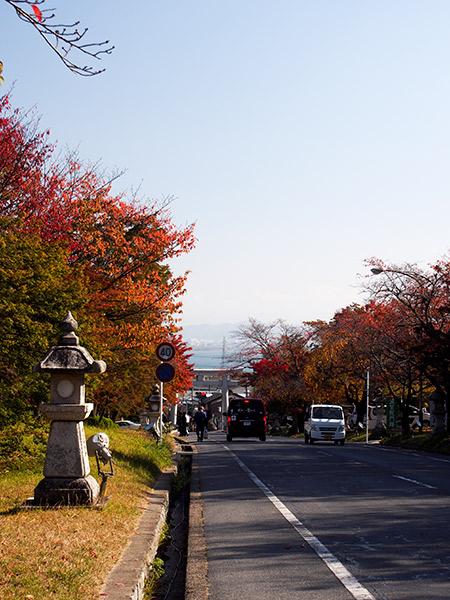 坂本 県道316