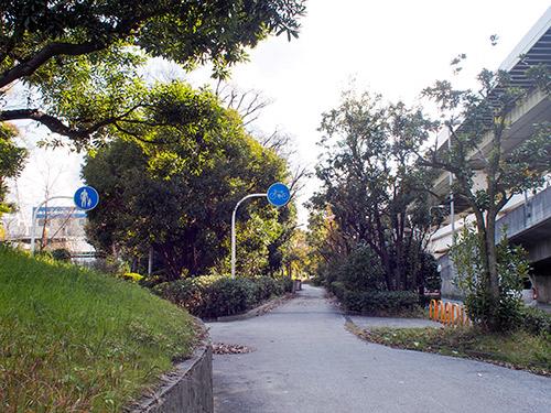 ニュートラム沿いの自転車歩行者道