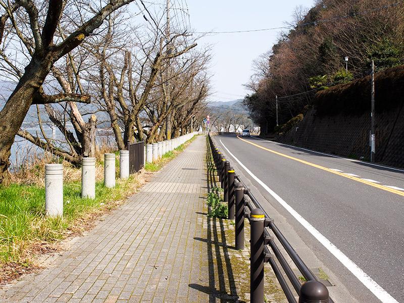 京都県道21号