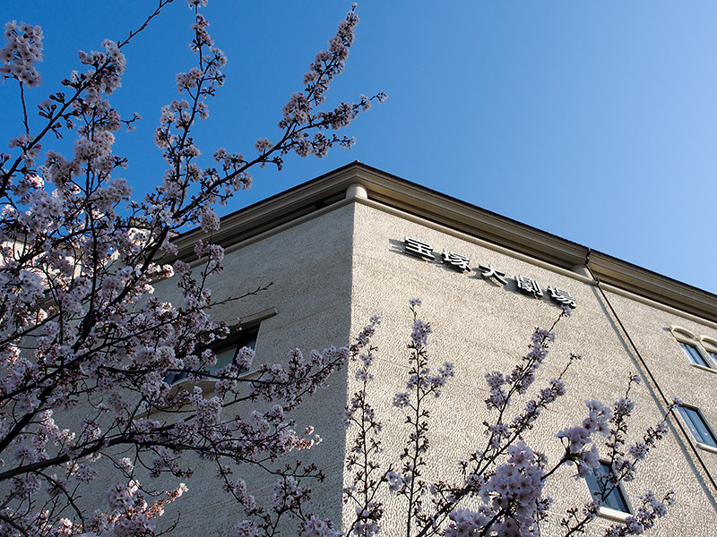 宝塚大劇場 桜 2015