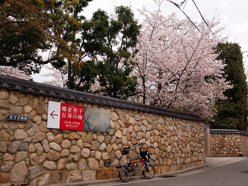 香雪美術館 桜 2015