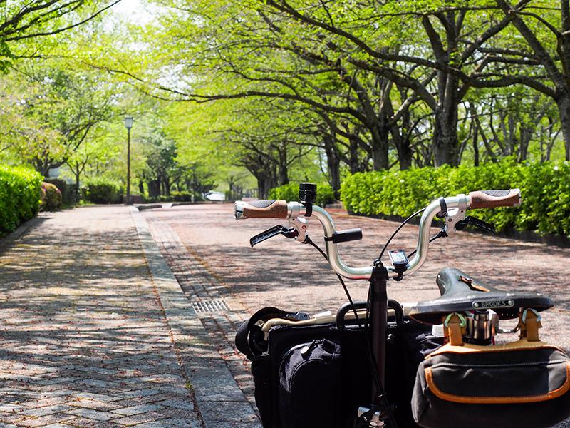 七谷川緑地 2015