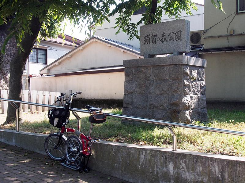 須賀の森公園