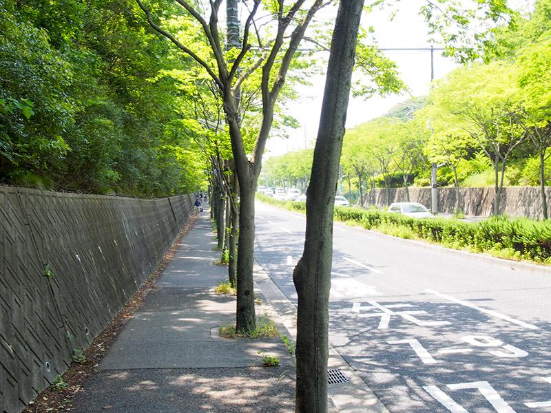 兵庫県道488