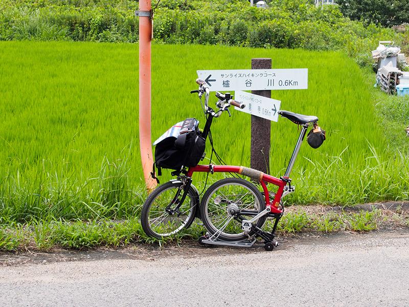ハイキングコース道標