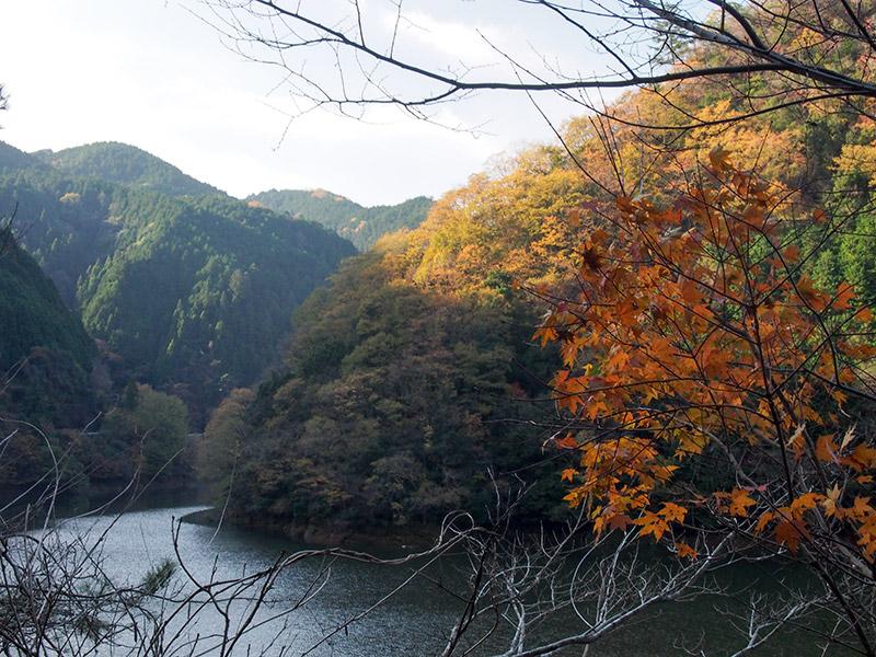 室生湖 紅葉 2015