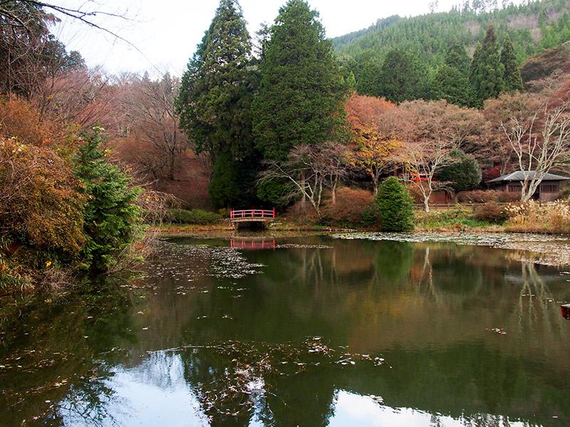 鳥見山公園 勾玉池