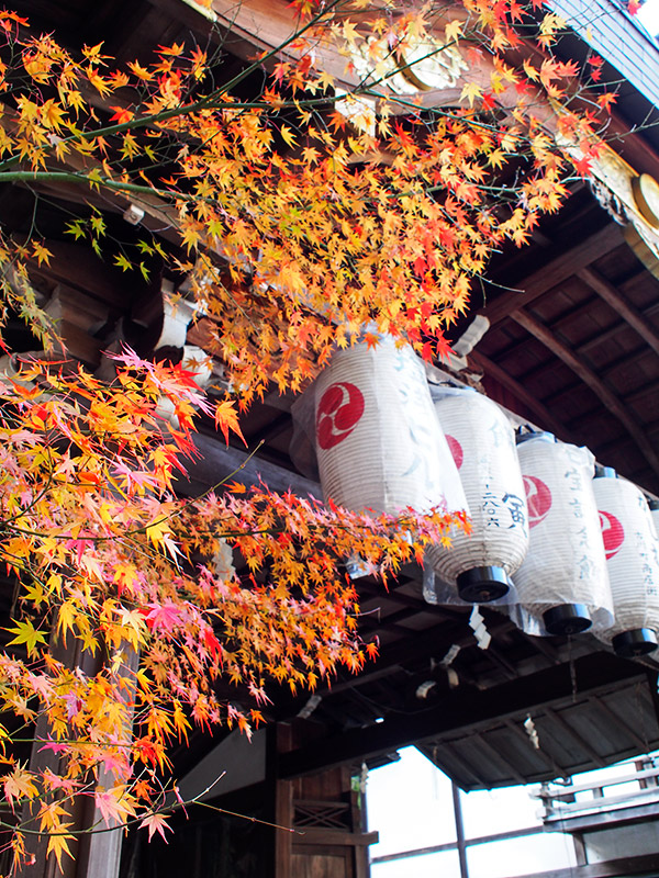 粟田神社 能舞台 紅葉 2015