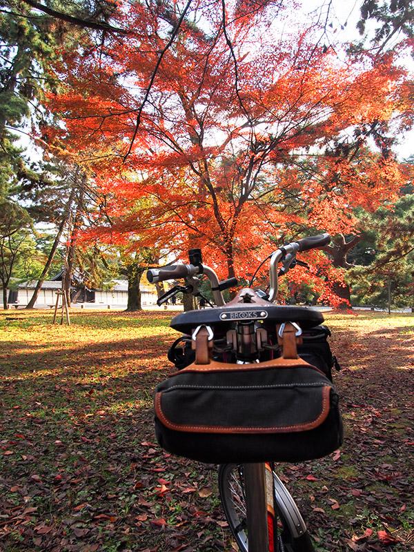 京都御所 紅葉 2015
