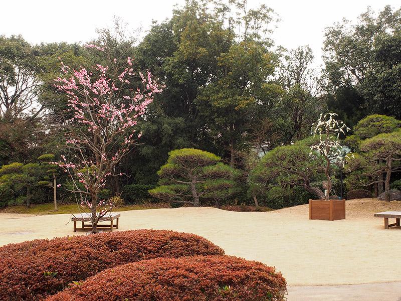 須磨離宮植物園 和庭園
