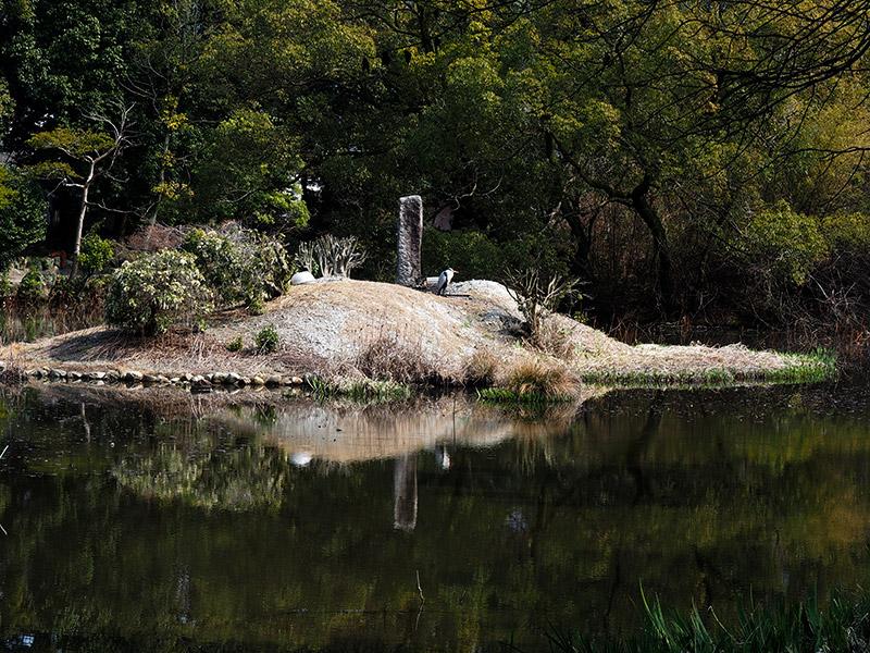 勧修寺 氷室の池