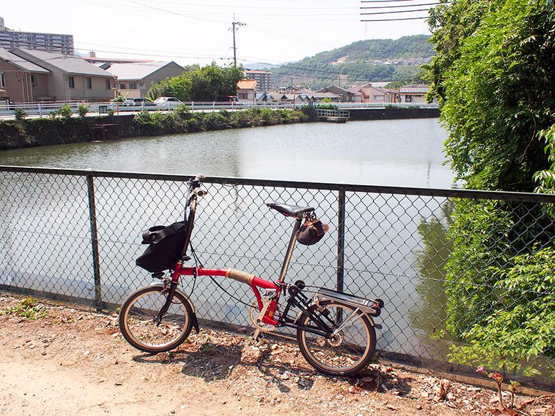旧松本邸 ブドウ池