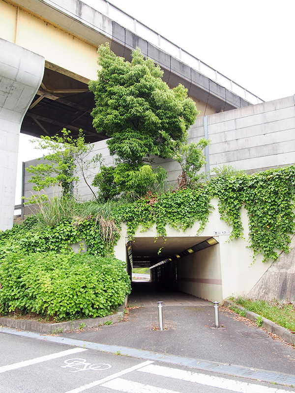 ひょうご東条IC 隧道