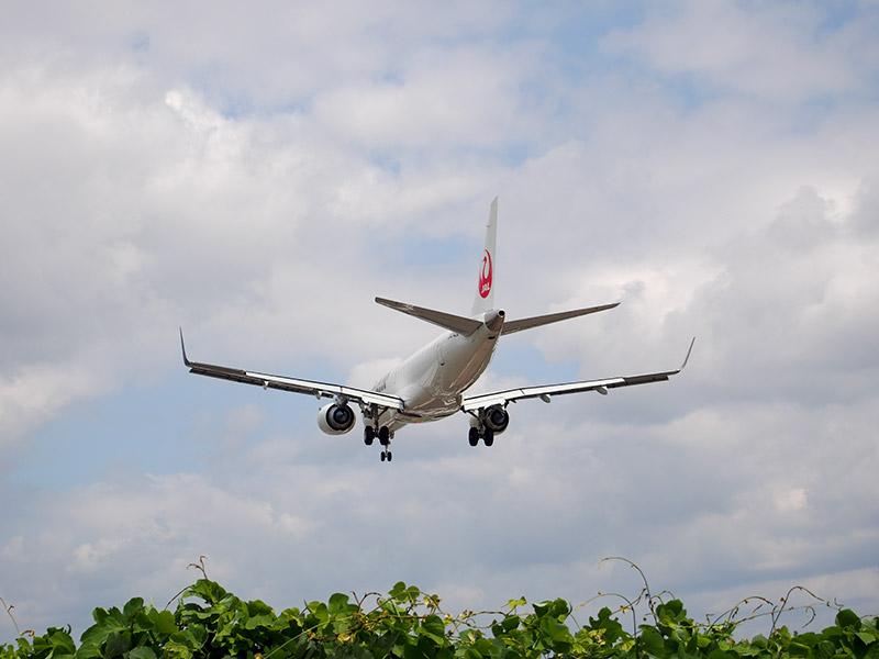 伊丹空港 南端 JAL