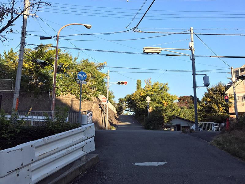 武庫川コスモス園ルート
