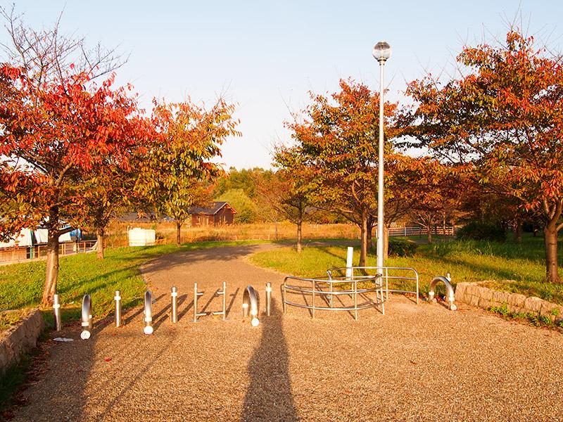 山田池公園 2016
