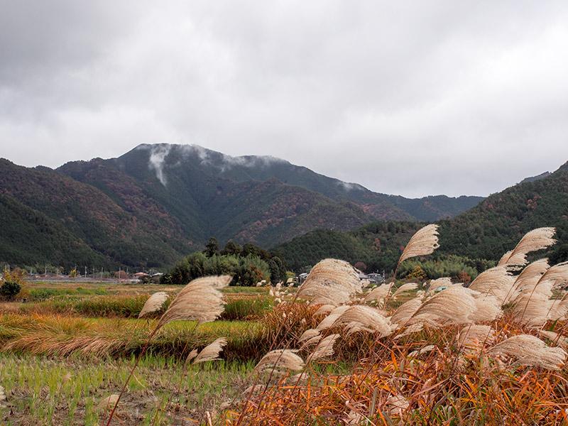 丹波 五台山