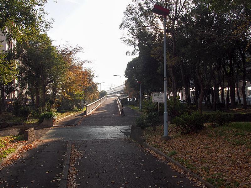 南港 自転車道