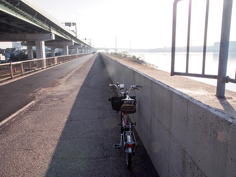 大和川沿い 2016