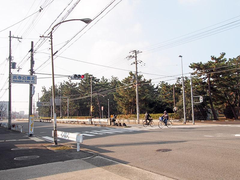 浜寺公園 2016