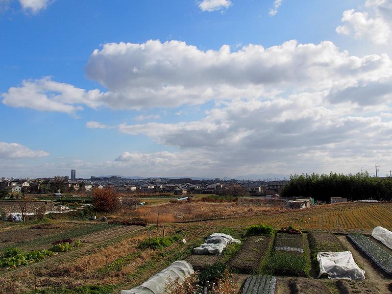 大阪府道9号から北摂の眺め