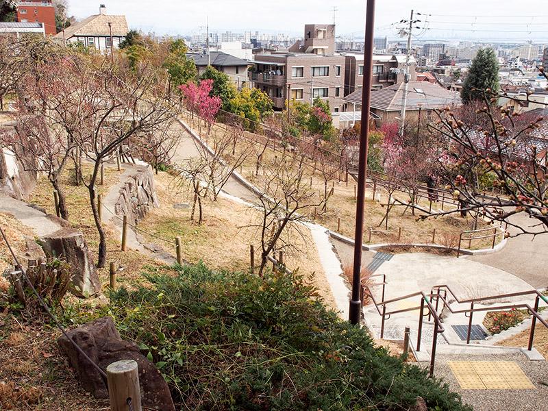 岡本梅林公園 2017