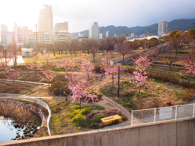 西郷川河口公園