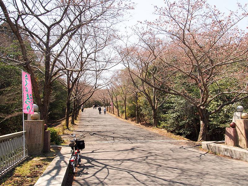 播磨中央公園 2017