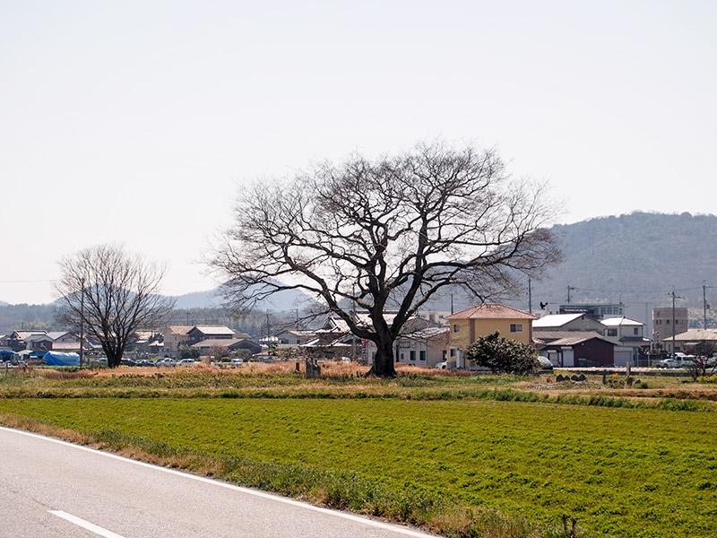 北条鉄道 粟生駅付近